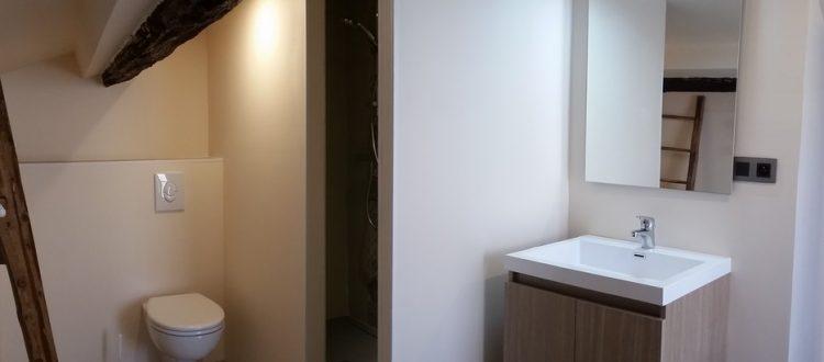 Salle d'eau et chambre Canigou